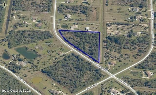 235 Cavalier Street, Palm Bay, FL 32909 (MLS #885622) :: Premium Properties Real Estate Services