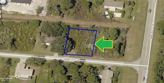 1689 Waneta Street SE, Palm Bay, FL 32909 (MLS #885756) :: Armel Real Estate
