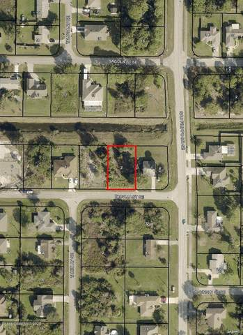 1291 Tacoma Street SE, Palm Bay, FL 32909 (MLS #886141) :: Coldwell Banker Realty
