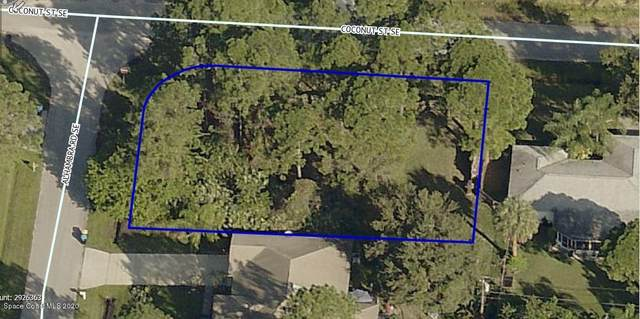 0000 Corner Of Alhambra & Coconut SE, Palm Bay, FL 32909 (MLS #886441) :: Blue Marlin Real Estate