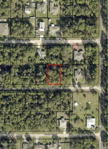 427 Olmsted Street SW, Palm Bay, FL 32908 (MLS #886445) :: Blue Marlin Real Estate