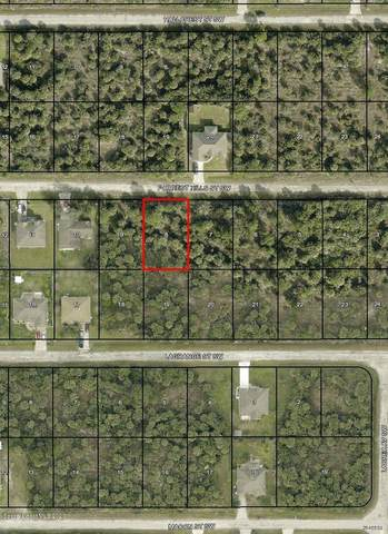 558 Forrest Hills Street SW, Palm Bay, FL 32908 (MLS #886452) :: Blue Marlin Real Estate