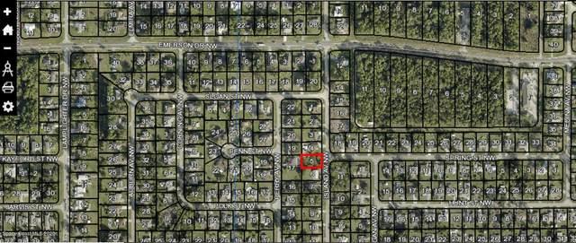 1260 Island Avenue NW, Palm Bay, FL 32907 (MLS #886700) :: Blue Marlin Real Estate