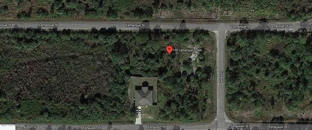 150 Lamarque Street SW, Palm Bay, FL 32908 (MLS #886701) :: Blue Marlin Real Estate