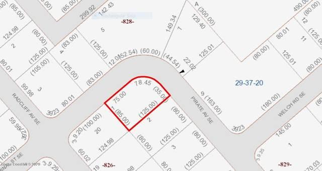 1808 SE Pirate Avenue SE, Palm Bay, FL 32909 (MLS #886864) :: Premium Properties Real Estate Services