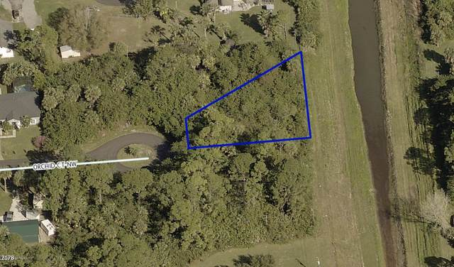 1701 Orchid Court NW, Palm Bay, FL 32907 (MLS #886870) :: Blue Marlin Real Estate