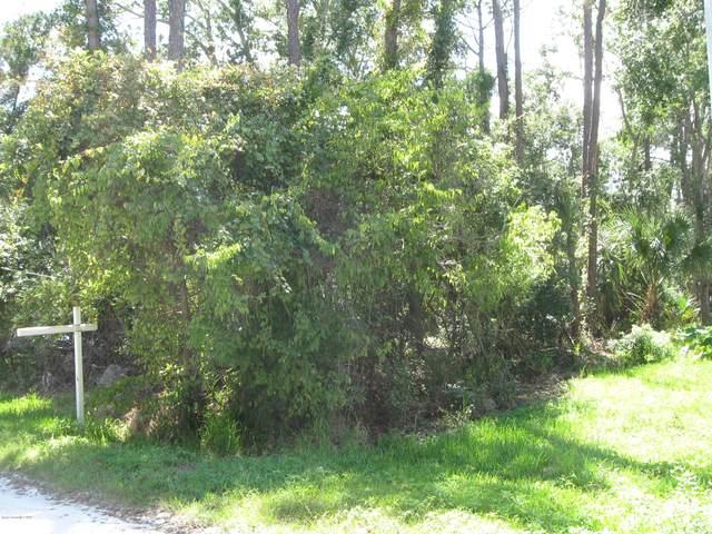 2465 Kaiser Road, Mims, FL 32754 (MLS #886921) :: Premium Properties Real Estate Services