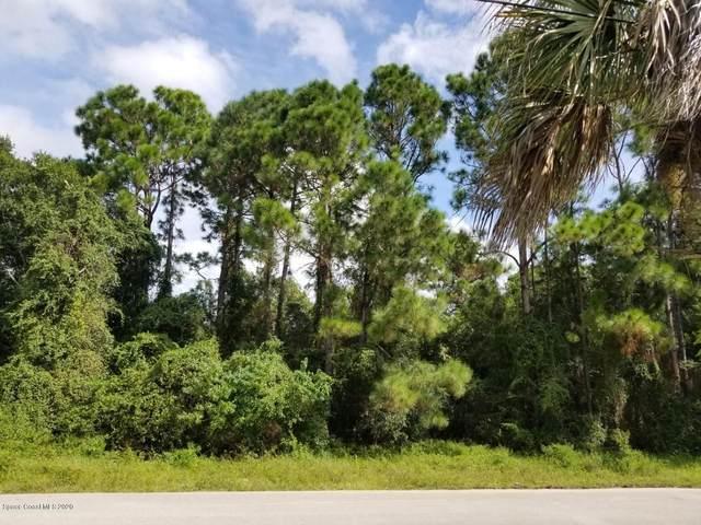 767 Merrimac Street SE, Palm Bay, FL 32909 (MLS #887000) :: Blue Marlin Real Estate