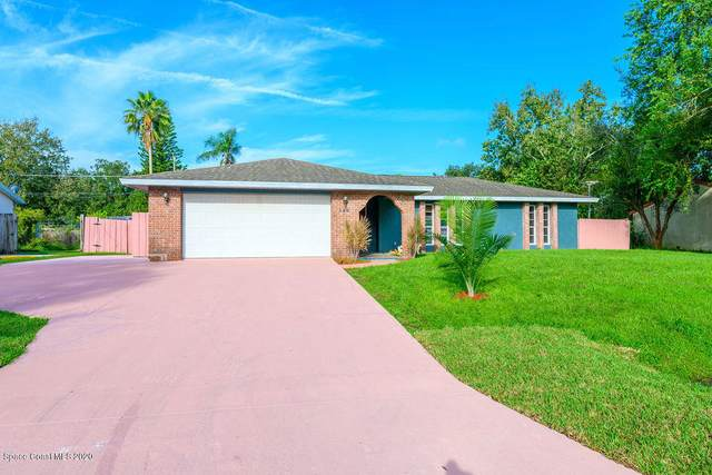 386 Riley Avenue NE, Palm Bay, FL 32907 (MLS #887253) :: Premium Properties Real Estate Services