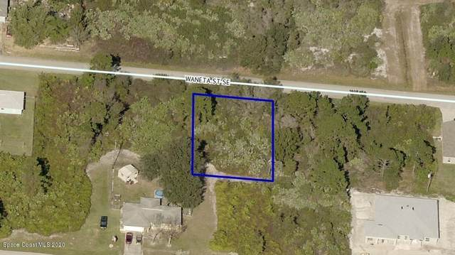 1634 Waneta Street SE, Palm Bay, FL 32909 (MLS #887488) :: Blue Marlin Real Estate