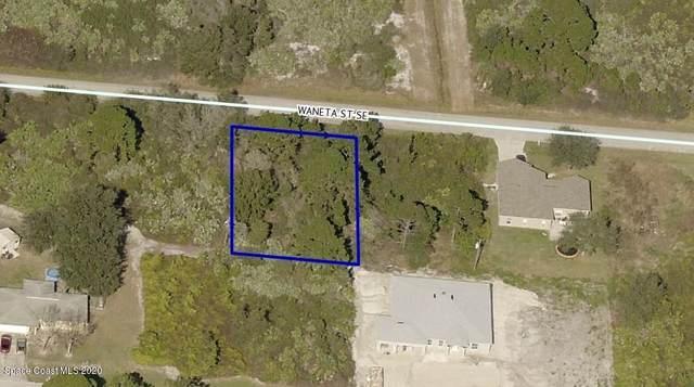 1642 Waneta Street SE, Palm Bay, FL 32909 (MLS #887490) :: Blue Marlin Real Estate