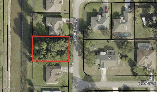 966 Alpine Avenue NW, Palm Bay, FL 32907 (MLS #887645) :: Blue Marlin Real Estate