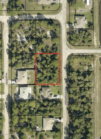 3318&3326 Fitzpatrick (2 Lots) Avenue SW, Palm Bay, FL 32908 (MLS #887945) :: Blue Marlin Real Estate