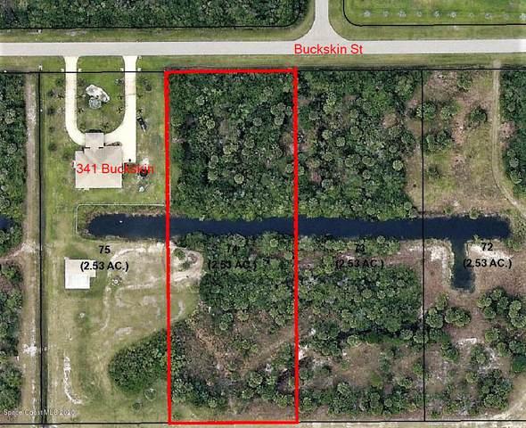 337 Buckskin Street, Palm Bay, FL 32909 (MLS #888006) :: Premium Properties Real Estate Services