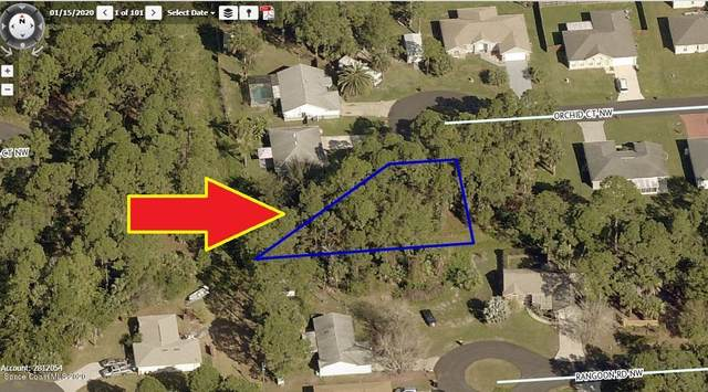 1790 Orchid Court NW, Palm Bay, FL 32907 (MLS #888049) :: Blue Marlin Real Estate