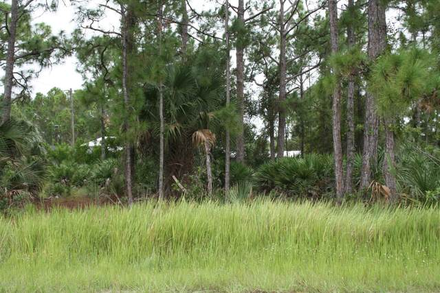 387 Sawyer Street SW, Palm Bay, FL 32908 (MLS #888113) :: Premium Properties Real Estate Services