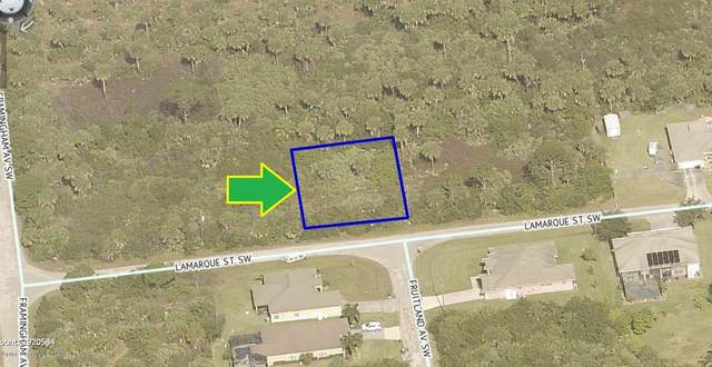 277 Lamarque Street SW, Palm Bay, FL 32908 (MLS #888135) :: Blue Marlin Real Estate