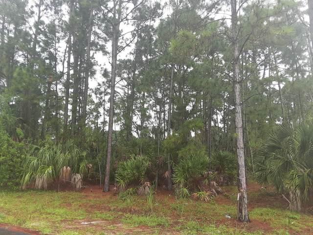 1451 Schmitt Avenue SW, Palm Bay, FL 32908 (MLS #888220) :: Coldwell Banker Realty