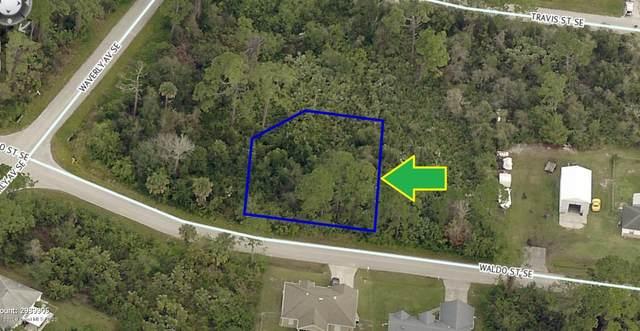 1609 Waldo Street SE, Palm Bay, FL 32909 (MLS #888261) :: Blue Marlin Real Estate