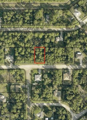 131 Feldman Street SE, Palm Bay, FL 32909 (MLS #888294) :: Premium Properties Real Estate Services