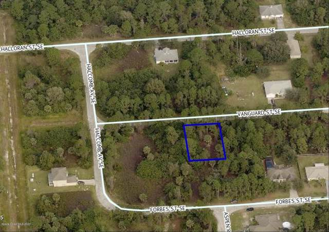 320 Vanguard Street SE, Palm Bay, FL 32909 (MLS #888320) :: Premium Properties Real Estate Services