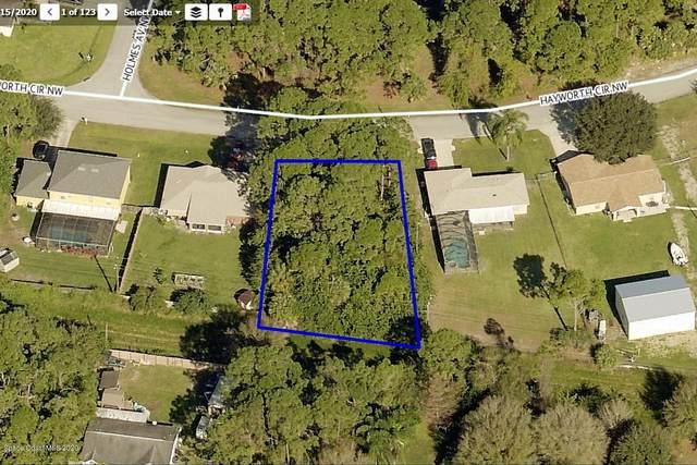 1420 Hayworth Circle NW, Palm Bay, FL 32907 (MLS #888375) :: Coldwell Banker Realty