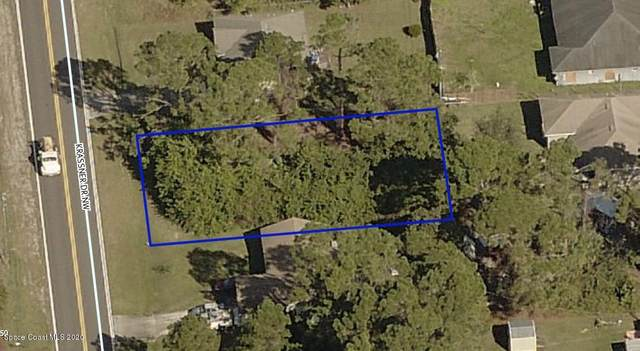 173 Krassner Drive NW, Palm Bay, FL 32907 (MLS #888390) :: Premium Properties Real Estate Services