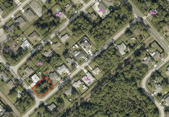 1799 Wilkig Avenue SE, Palm Bay, FL 32909 (MLS #888686) :: Premium Properties Real Estate Services