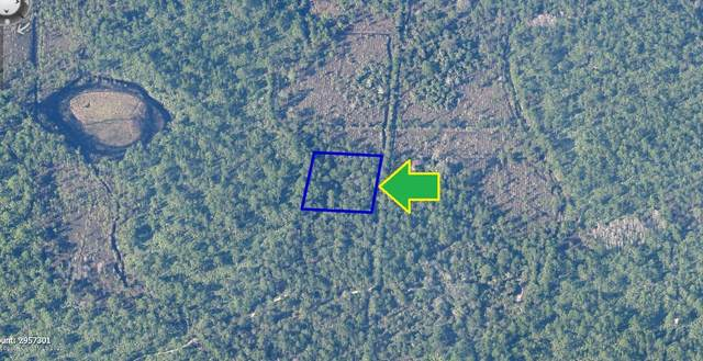 00000 No Access - West Of Eagles Avenue, Malabar, FL 32950 (MLS #888705) :: Engel & Voelkers Melbourne Central