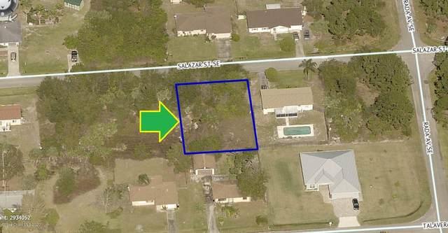 1572 Salazar Street SE, Palm Bay, FL 32909 (MLS #888862) :: Engel & Voelkers Melbourne Central