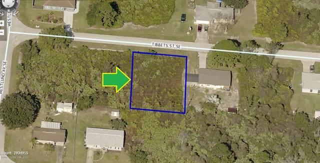 1618 Tibbets Street SE, Palm Bay, FL 32909 (MLS #888863) :: Blue Marlin Real Estate