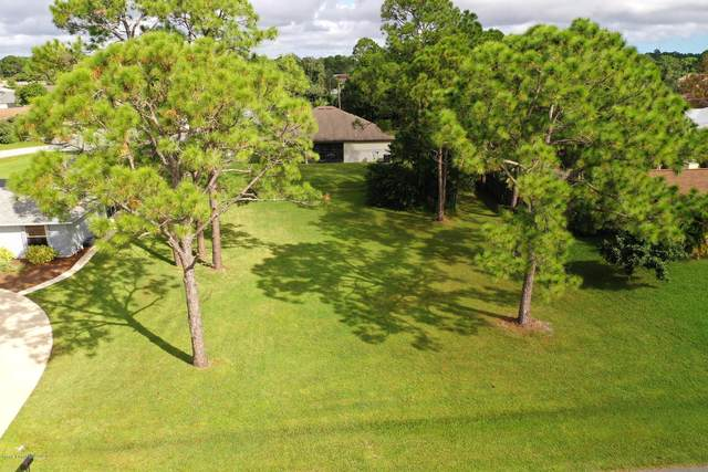1781 Lambton Street NW, Palm Bay, FL 32907 (MLS #888925) :: Blue Marlin Real Estate
