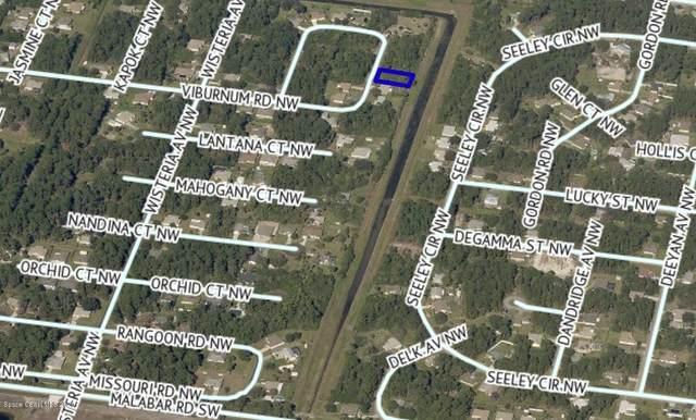313 Tamarind Circle NW, Palm Bay, FL 32907 (MLS #888973) :: Blue Marlin Real Estate