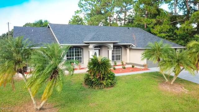 785 Pampas Street NW, Palm Bay, FL 32907 (MLS #889142) :: Premium Properties Real Estate Services