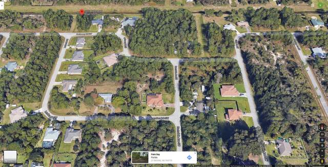 1223 Hathaway Road SW, Palm Bay, FL 32908 (MLS #889321) :: Premium Properties Real Estate Services