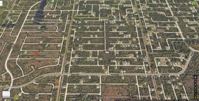 713 Opal Street SW, Palm Bay, FL 32908 (MLS #889332) :: Premium Properties Real Estate Services