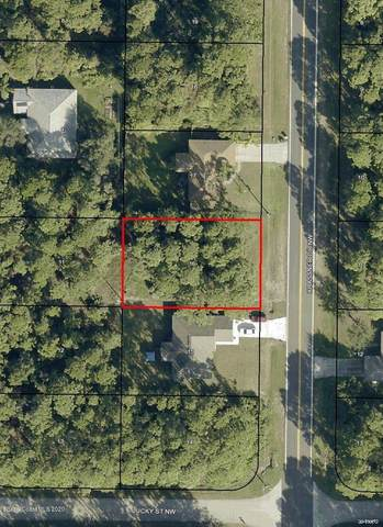 218 Krassner Drive NW, Palm Bay, FL 32907 (MLS #889346) :: Coldwell Banker Realty