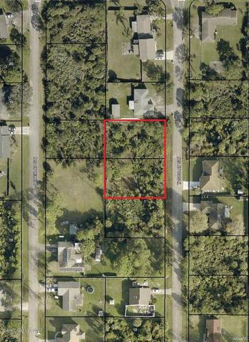 538 & 548 Tasco (2 Lots) Avenue SW, Palm Bay, FL 32908 (MLS #889427) :: Premium Properties Real Estate Services