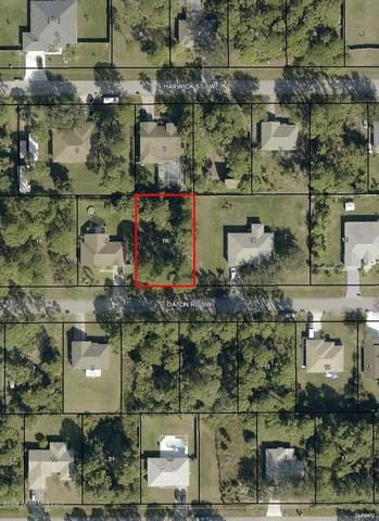 1251 Daton Road SW, Palm Bay, FL 32908 (MLS #889549) :: Premium Properties Real Estate Services