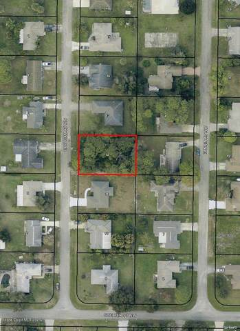 1641 Earlham Avenue NW, Palm Bay, FL 32907 (MLS #889550) :: Coldwell Banker Realty