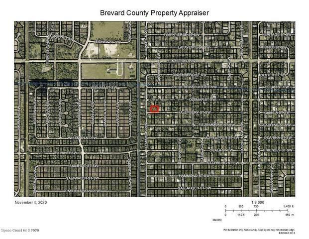 579 Haleybury Street SW, Palm Bay, FL 32908 (MLS #889561) :: Premier Home Experts