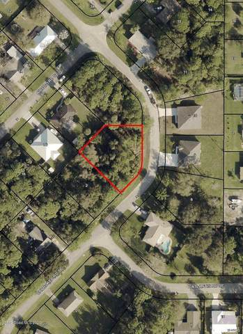 1090 Cherokee Road SE, Palm Bay, FL 32909 (MLS #889799) :: Premium Properties Real Estate Services