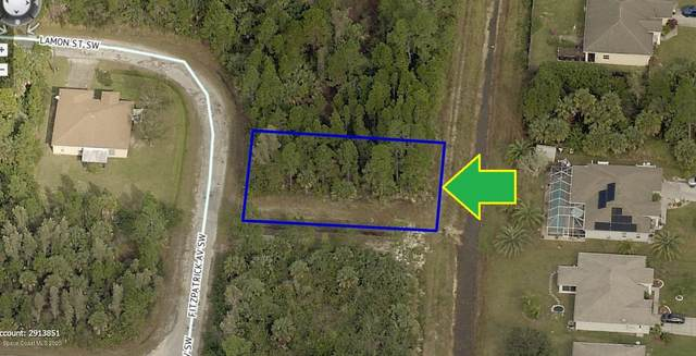 2687 Fitzpatrick Avenue SW, Palm Bay, FL 32908 (MLS #889820) :: Coldwell Banker Realty
