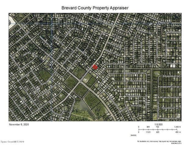 1915 San Filippo Drive SE, Palm Bay, FL 32909 (MLS #889850) :: Coldwell Banker Realty