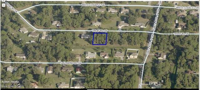 280 SW Trilby Road SW, Palm Bay, FL 32908 (MLS #889859) :: Coldwell Banker Realty