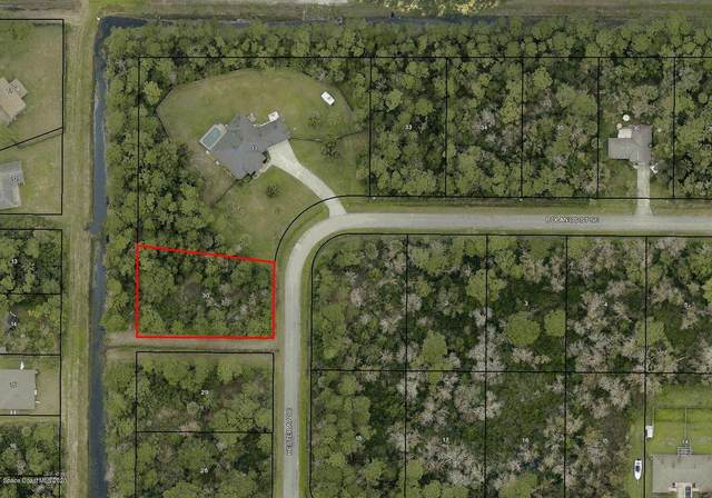 2510 Hester Avenue SE, Palm Bay, FL 32909 (MLS #890113) :: Premium Properties Real Estate Services
