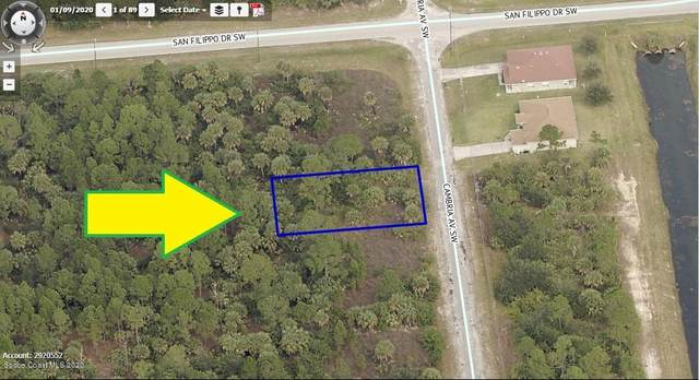 3028 Cambria Avenue SW, Palm Bay, FL 32908 (MLS #890218) :: Coldwell Banker Realty