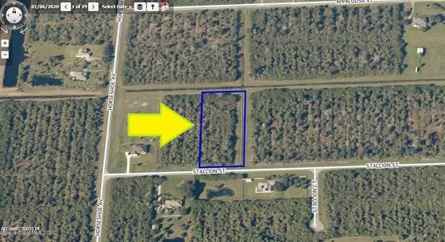 344 Stallion Street, Palm Bay, FL 32909 (MLS #890245) :: Premium Properties Real Estate Services