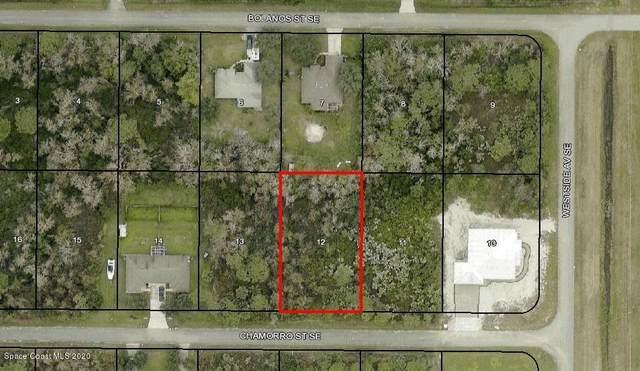 1673 Chamorro Street SE, Palm Bay, FL 32909 (MLS #890448) :: Coldwell Banker Realty