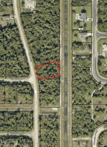 1985 Day Avenue SW, Palm Bay, FL 32908 (MLS #890687) :: Premium Properties Real Estate Services